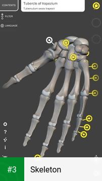 Skeleton app screenshot 3