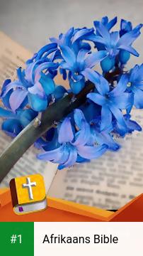 Afrikaans Bible app screenshot 1