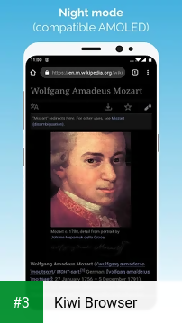 Kiwi Browser app screenshot 3