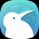 Kiwi Browser app icon