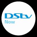 DStv Now app icon