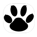 Call Recorder app icon